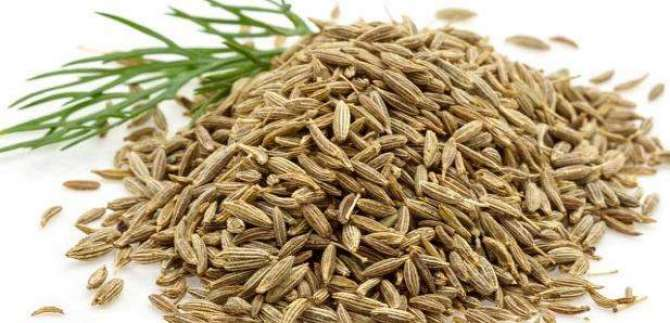 Cumin Use and benefits!