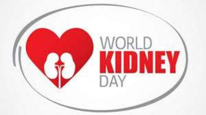 Photo of World Kidney Day