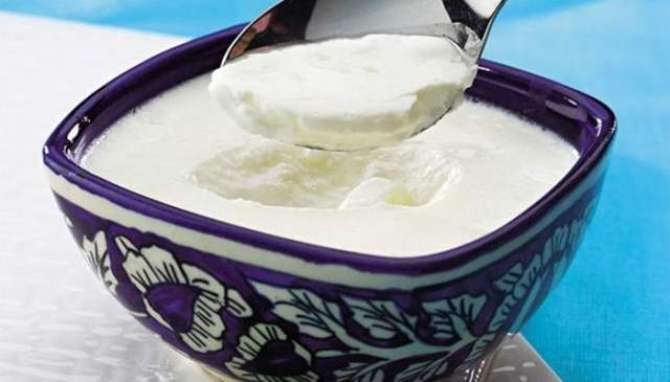 Photo of Eat the yogurt away from the obesity